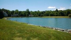 10023  Mill Pond Dr